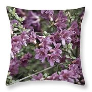 Azalea Throw Pillow by Frank Tschakert
