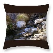 Babbling Brook Throw Pillow by Barbara Snyder