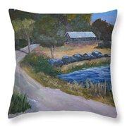 Babcock Ranch Webb Lake Throw Pillow by Kathy Przepadlo