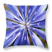 Baby Blue Throw Pillow by Molly McPherson
