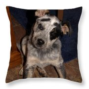 Baby Darla Throw Pillow by James Peterson