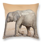 Baby Elephant  Throw Pillow by Johan Swanepoel
