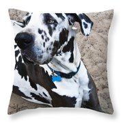 Bacchus The Great Dane Throw Pillow by Sharon Cummings