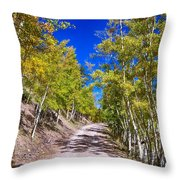 Back Country Road Take Me Home Colorado Throw Pillow by James BO  Insogna