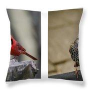 Backyard Bird Series Throw Pillow by Heather Applegate