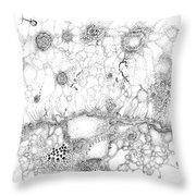 Bacteriophage Ballet Throw Pillow by Regina Valluzzi
