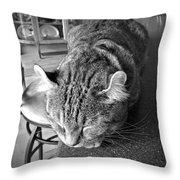 Bad Cat Throw Pillow by Susan Leggett