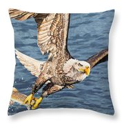 Bald Eagle Fishing  Throw Pillow by Aaron Spong