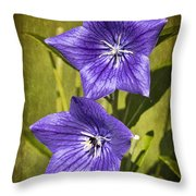 Balloon Flower Throw Pillow by Marcia Colelli