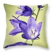 Balloon Flowers Throw Pillow by Tony Cordoza