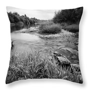 Bambi's Playground Throw Pillow by Davorin Mance