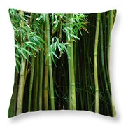 Bamboo Forest Maui Throw Pillow by Bob Christopher