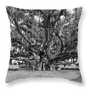 Banyan Tree Throw Pillow by Scott Pellegrin