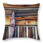 barn door Throw Pillow by Wayne Sherriff