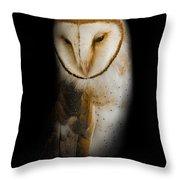 Barn Owl Throw Pillow by Bill Wakeley