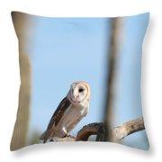 barn owl Throw Pillow by David S Reynolds