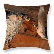 Barn Swallow Nest Throw Pillow by Scott Linstead