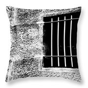 Barred Throw Pillow by Justin Woodhouse