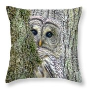 Barred Owl Peek A Boo Throw Pillow by Jennie Marie Schell