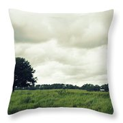 Bartow Highway Throw Pillow by Laurie Perry