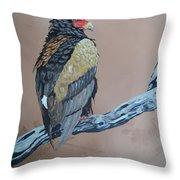Bateleur Throw Pillow by Robert Teeling