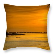 Bayport Dolphins Throw Pillow by Marvin Spates