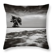 Beach Tree Throw Pillow by Dave Bowman