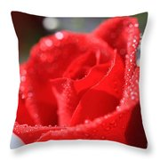 Beautiful as a Rose Throw Pillow by Cheryl Young