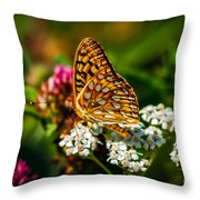 Beautiful Butterfly Throw Pillow by Robert Bales
