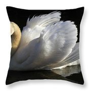 Beautiful Display Throw Pillow by Donna Kennedy