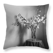 Beautiful Melancholy Throw Pillow by Amy Weiss