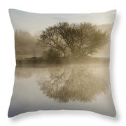 Beautiful Misty River Sunrise Throw Pillow by Christina Rollo