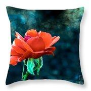 Beautiful Red Rose Throw Pillow by Robert Bales