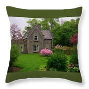 Beautiful Setting Throw Pillow by John Malone