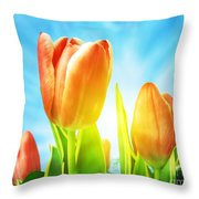 Beautiful Spring Tulips Background Throw Pillow by Michal Bednarek
