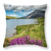 Beautiful Wales Throw Pillow by Adrian Evans