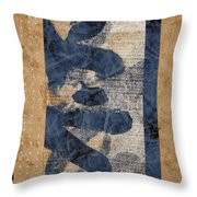 Behind The Screen Throw Pillow by Carol Leigh