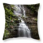 Benton Falls Throw Pillow by Debra and Dave Vanderlaan