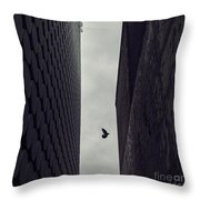 Between Worlds Throw Pillow by Andrew Paranavitana