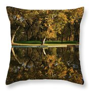 Bidwell Park Reflections Throw Pillow by James Eddy