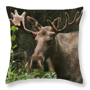 Big Guy Throw Pillow by Rick  Monyahan