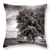 Big Old Tree Throw Pillow by Olivier Le Queinec