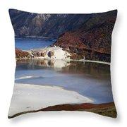 Big Sur Coastal Pond Throw Pillow by Jenna Szerlag