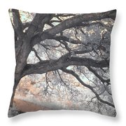 Big Sur Oak Throw Pillow by Jane Linders