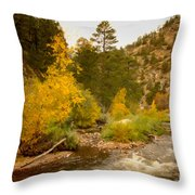 Big Thompson River 10 Throw Pillow by Jon Burch Photography
