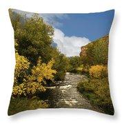 Big Thompson River 2 Throw Pillow by Jon Burch Photography