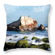 Bird Sentry Rock At Dana Point Harbor Throw Pillow by Elaine Plesser