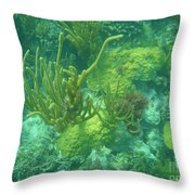 Biscayne Forest Throw Pillow by Adam Jewell