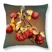 Bittersweet Memories Throw Pillow by RC DeWinter