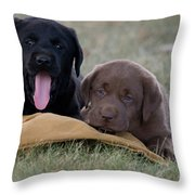 Black And Chocolate Labradors Throw Pillow by Linda Freshwaters Arndt